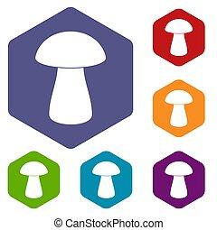 Fungus boletus icons set hexagon isolated  illustration