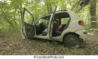 Small White Car Lost In Wild Forest