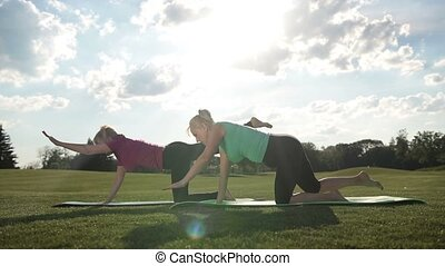 Elegant sporty ladies practicing yoga pose in park - Side...