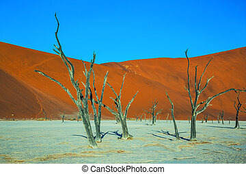 Ecotourism in Namibia - The dried lake Deadvlei. Scenic...