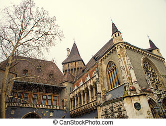 Vajdahunyad Castle in Budapest at day in Hungary