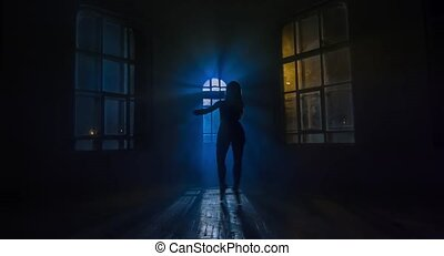 Girl in pointes dances against the window in moonlight....