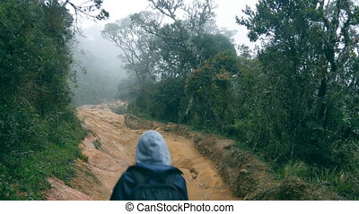 Young girl in raincoat going on wood trail during travel....