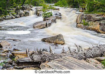 Lower Rosseau Falls are located in the District of Parry...