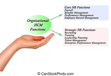 Orgnizational HCM Functions