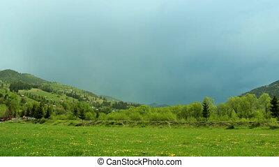 Carpathian meadows