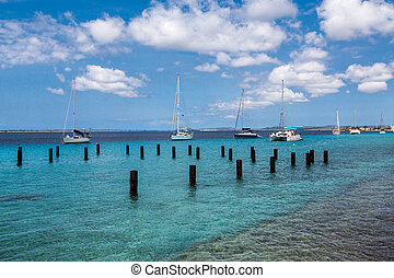 Sailboats Moored in Bonaire by Posts