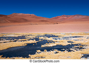 frozen lagoon in Atacama desert, Chile