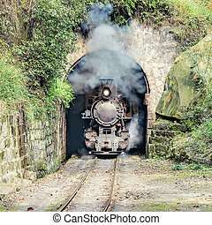 Steam narrow-gauge train moves from Yuejin to Bagou through...