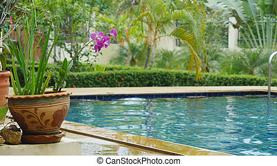 A stunning tropical beach resort with a swimming pool drowning in greenery and flowers. Koh Samui