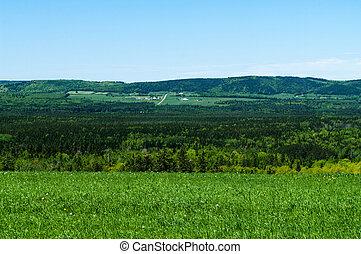 Rural Farm Land