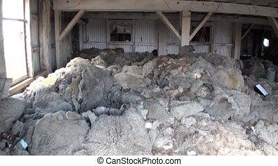 Dump of sheep hides in Patagonia. Terrible place in Tierra...