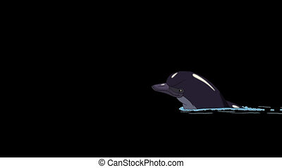 Dolphin Swims in the Water. Animated footage with alpha...