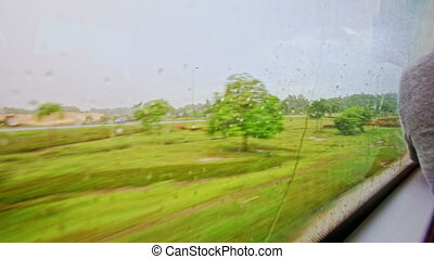 Green Landscape Through Moving Train Window with Rain Drops...