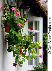 Home Garden Scenery - Flowerpot decoration hanging on the...