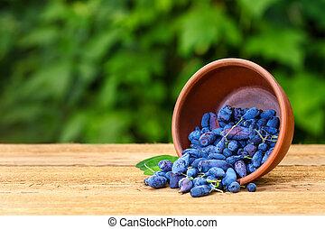 honeysuckle berries in bowl - ripe honeysuckle berries in...