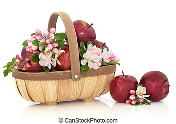 Apples and Flower Blossom