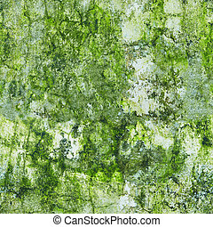 Old wall in the green mold - weathered seamless texture