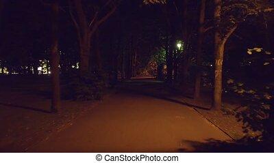 POV steadicam walk along summer park alley at night.