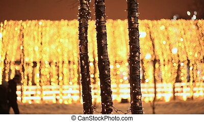 Moscow. Christmas decorations on tree trunks. Night city in...