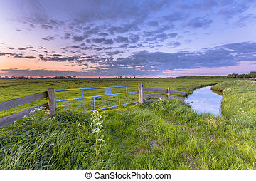 Purple sunset fence