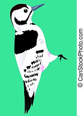 Woodpecker cartoon vector illustration