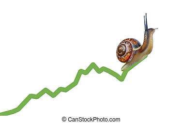 Snail on chart currency isolated on white background