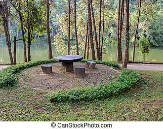 Garden table and chairs in pine tree forest in Mae Hong Son,...