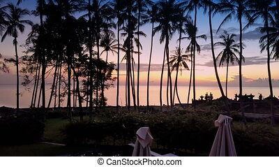 Aero view from drone of dawn of sun over sea through palm trees on beach, Bali, Indonesia,
