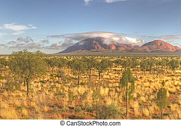 Kata Tjuta - Early morning light in the Simpson desert, Kata...