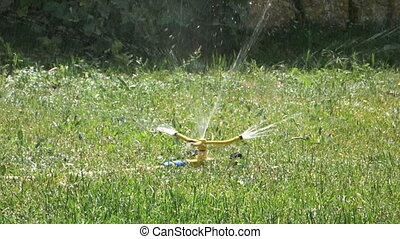 water sprinkler on green grass in motion