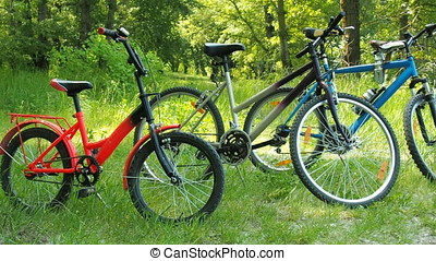 Bicycles family in nature.