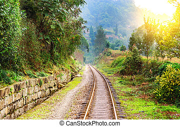 Narrow-gauge railway to Bagou in the jungle. - Narrow-gauge...