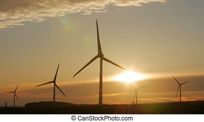 Driving by the wind farm in the evening. - Driving by the...