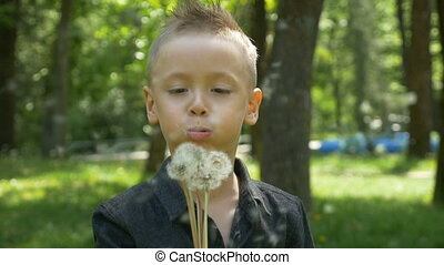Slow motion of little boy smiling and blowing dandelion with...
