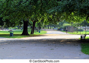 Travel to Vienna, Austria. The view on the park with big trees and a road in the sunny day.
