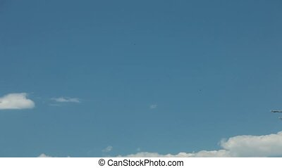 the plane flies in the blue sky