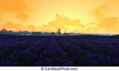 French lavander village with old windmill against morning...