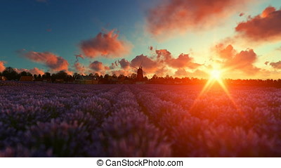 French lavander village with old windmill against beautiful sunset