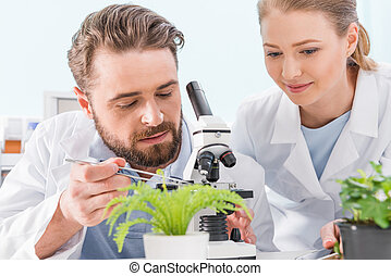 Two scientists working together with tweezers and microscope in laboratory