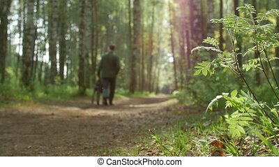 Male Owner Walking His Dog Along Forest Path In The Spring....