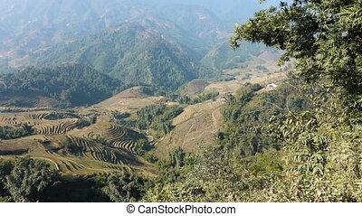 Beautiful view of the rice terraces at Sa Pa, Vietnam. Shot...