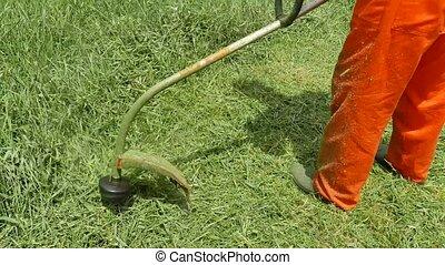 Farmer trimming cut grass - Worker man farmer trimming cut...
