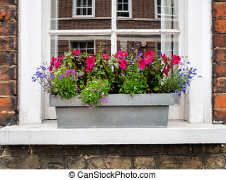 English home with flowers in Greenwich Village, London