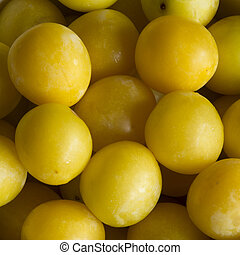 Delicious Mirabelle Plums