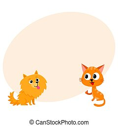 Pomeranian spitz dog and red cat, kitten characters,...