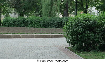 a guy with a girl walking in Park holding hands