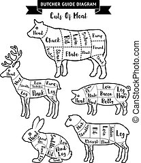 butcher - Butcher guide cuts of meat diagram. Vector...
