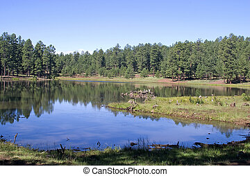 Big Bear Lake, Pinetop, AZ - Early morning at Big Bear Lake...