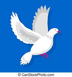 Flying white pigeon isolated on blue background vector illustration